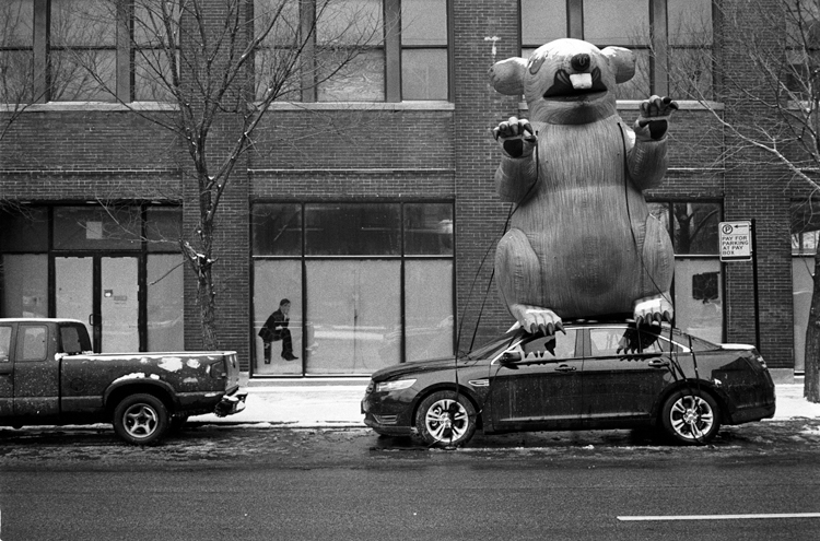 photoblog_chicago_photographer_freelance_michaeljarecki_giant_rat_labor_strike_workers_car