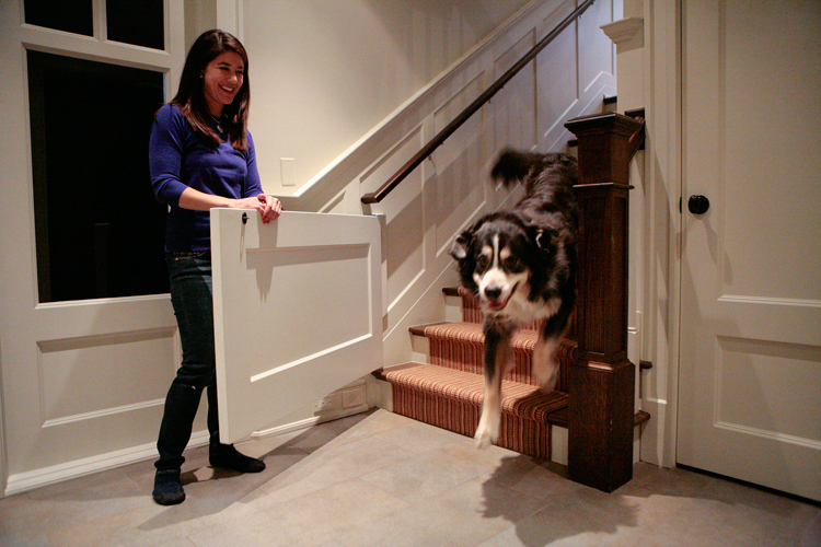 "Julie Greco opens a built in dog gate letting ""Howard"" downstairs in her Old Irving Park neighborhood home on Thursday, January 30, 2014.  Greco and her husband Mario built the 6,600 square foot home with a few amenities to help accommodate their dogs.  