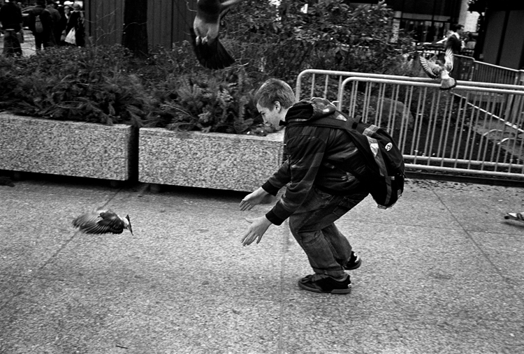 photoblog_chicago_photographer_freelance_michaeljarecki_bird_boy_catch_chase_pigeon_downtown_street_black&white