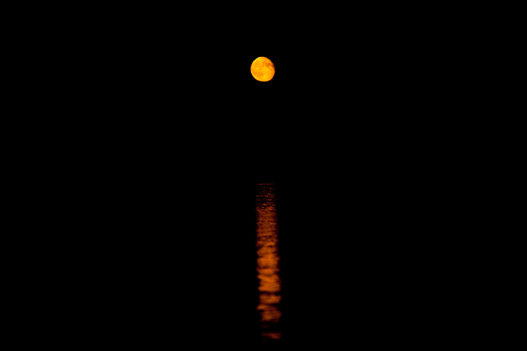 photoblog_chicago_freelance_photographer_michaeljarecki_photojournalist_nature_longLake_wisconsin_ORANGE_MOON_reflection