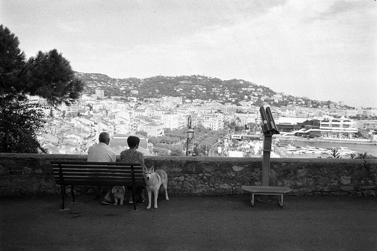 photoblog-freelance-photographer-michaeljarecki-photojournalist-street-photography-black&white-france-cannes-dogs-tourists-cool-awesome-funny