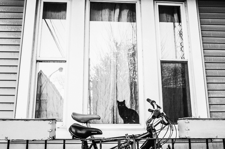 photoblog-commercial-freelance-photographer-michaeljarecki-photojournalist-street-black&white-black-cat-window-witchcraft